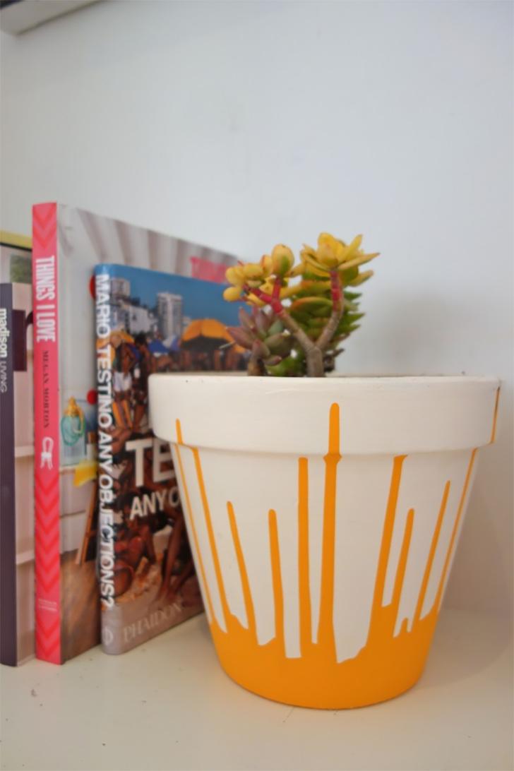 ideias para personalizar vasos de suculentas 7