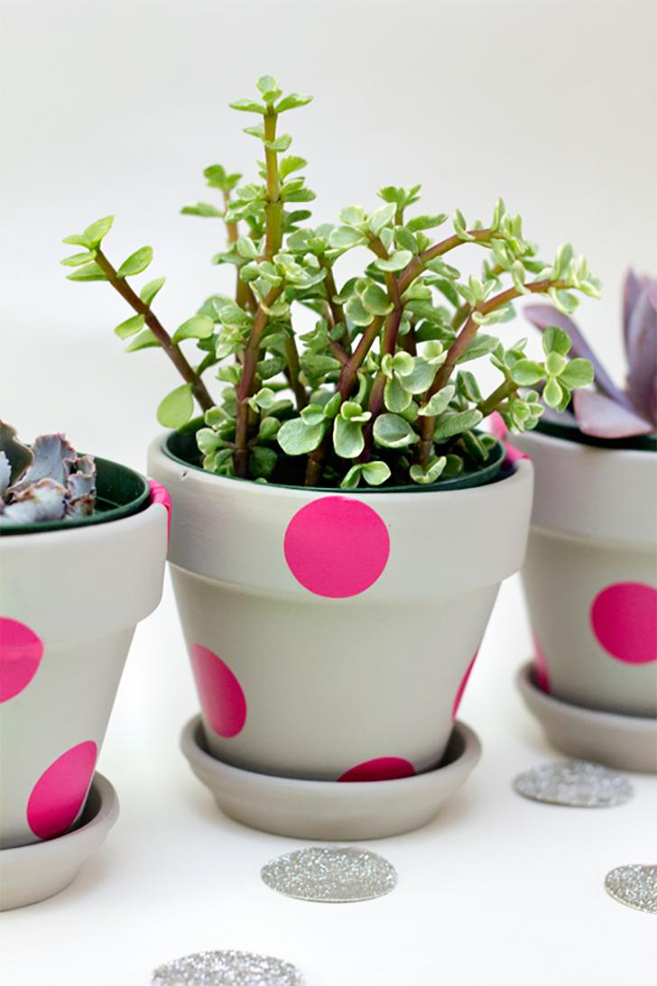 10 Ideias Para Personalizar Os Vasos De Suculentas