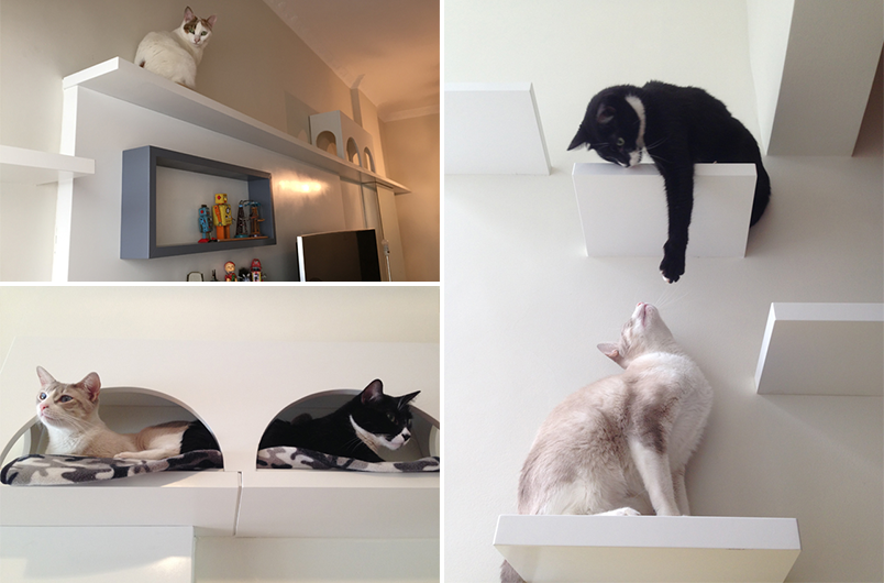 Dicas de decoração para quem tem gatos em casa 2