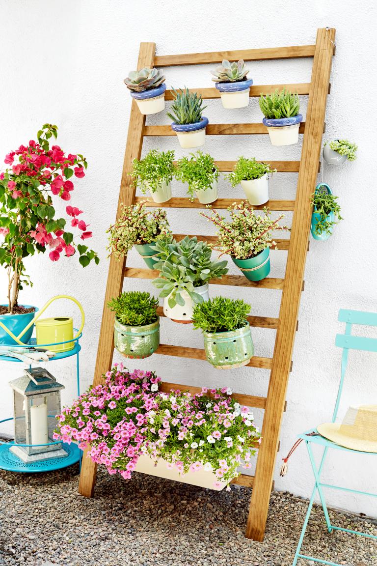jardim vertical ideias:Jardim Vertical: ideias para montar o seu em casa – Casinha Arrumada