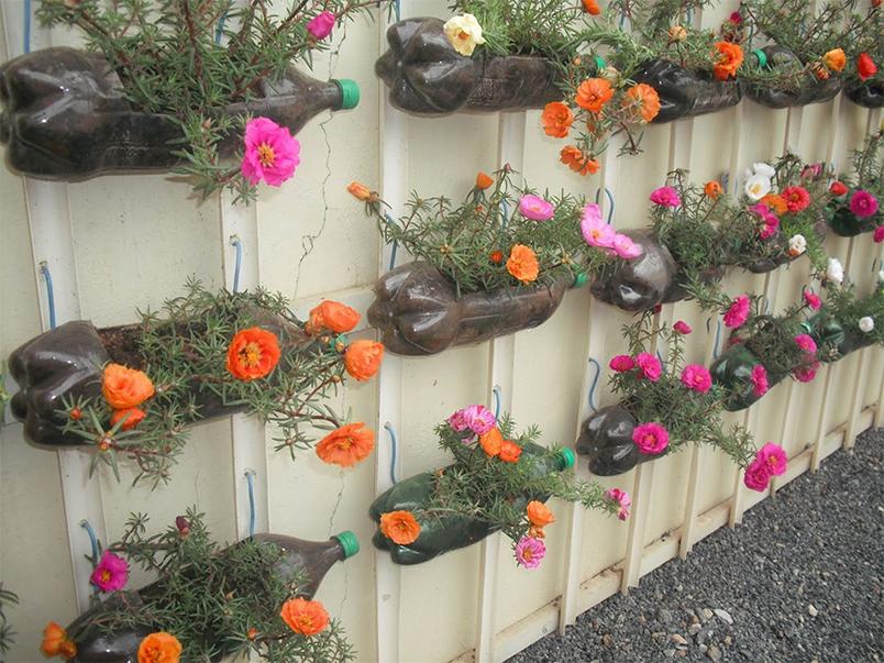 Jardim Vertical: ideias para montar o seu em casa ...
