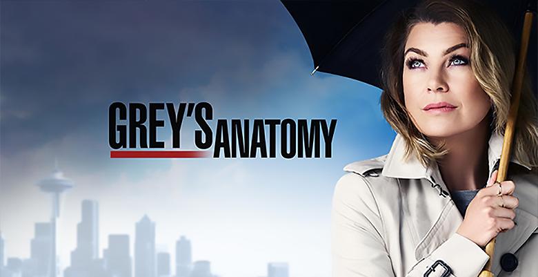 Série 5 Grey's Anatomy