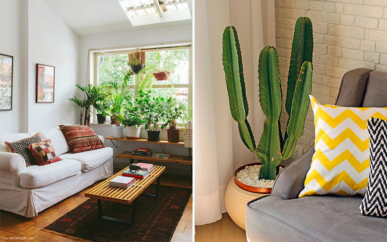 4 dicas para decorar a sala de estar gastando pouco 6