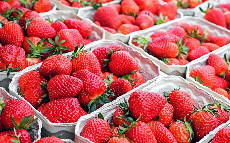 Como escolher frutas na feira 2