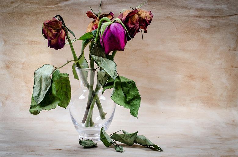 dicas-para-fazer-lindos-arranjos-de-flores-7