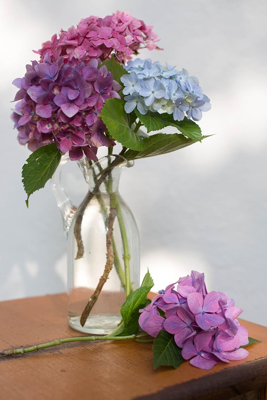dicas-para-fazer-lindos-arranjos-de-flores-9