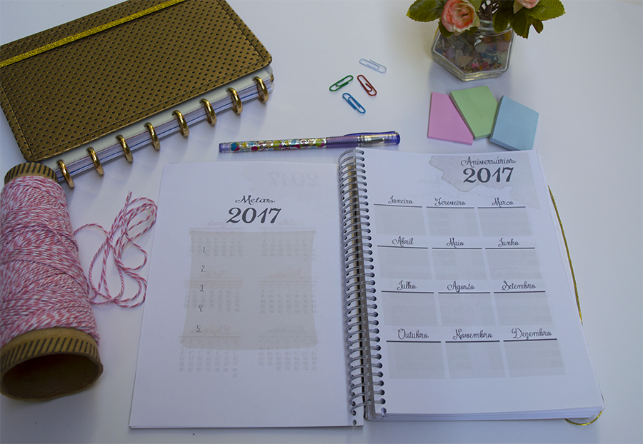 planner-2017-para-download-5